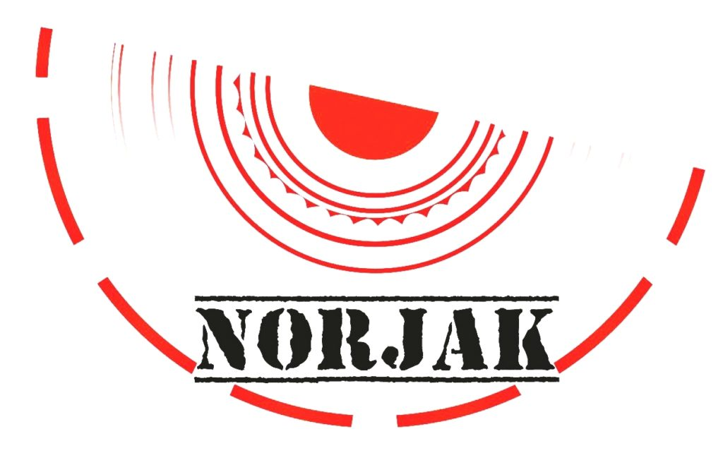 Logo del marchio Norjak, specializzato nella protezione di dati e informazioni riservate e prevenzione degli attacchi informatici.